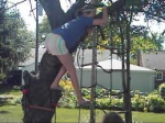 girl falling out of tree