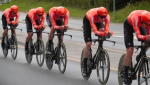 cycling teams